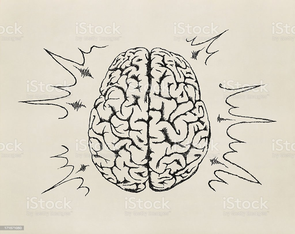 Concept of working human brain. Sketch. stock photo