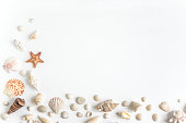 Concept on the marine theme. Seashells, towel on a white wooden background. Travel background
