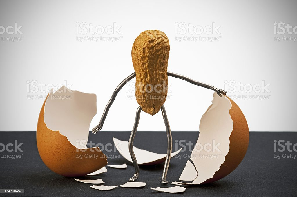 Concept peanut man - Coming out stock photo
