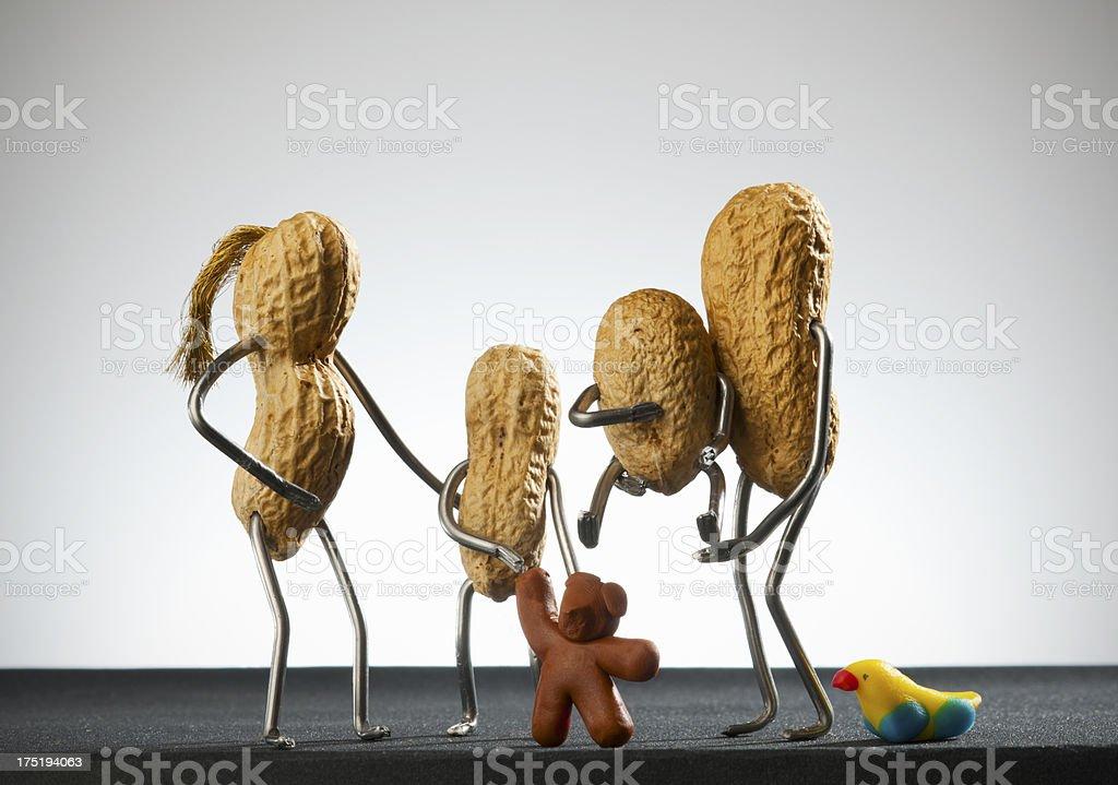Concept peanut man- Family stock photo