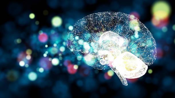 concepto de ai (inteligencia artificial). - brain fotografías e imágenes de stock