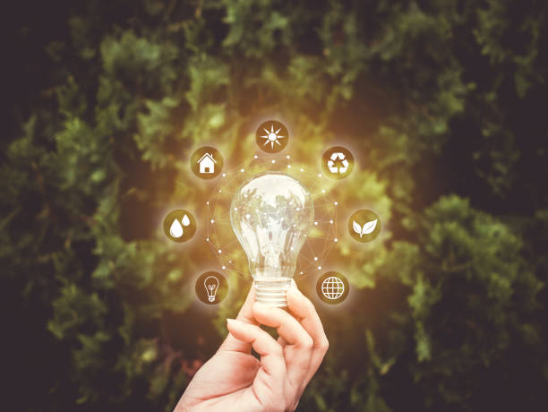 Concept save energy efficiency. Hand holding light bulb with icon on blurred tree background Concept save energy efficiency. Hand holding light bulb with icon on blurred tree background sustainable energy stock pictures, royalty-free photos & images