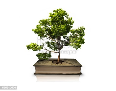 istock Concept tree from a book.From the crack in the book grows a tree. 696940656
