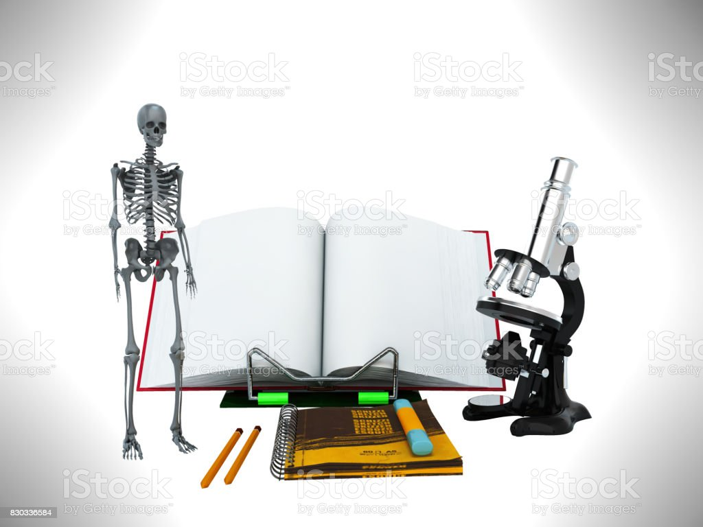 Concepts of school and education biology 3d render on gray background stock photo