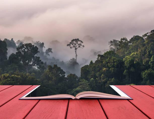 konzeptionelle buch bild der schönen landschaft des nebels mit bergkette an panoenthung aussichtspunkt im kaeng krachan national park, thailand - vorschuldekorationen stock-fotos und bilder