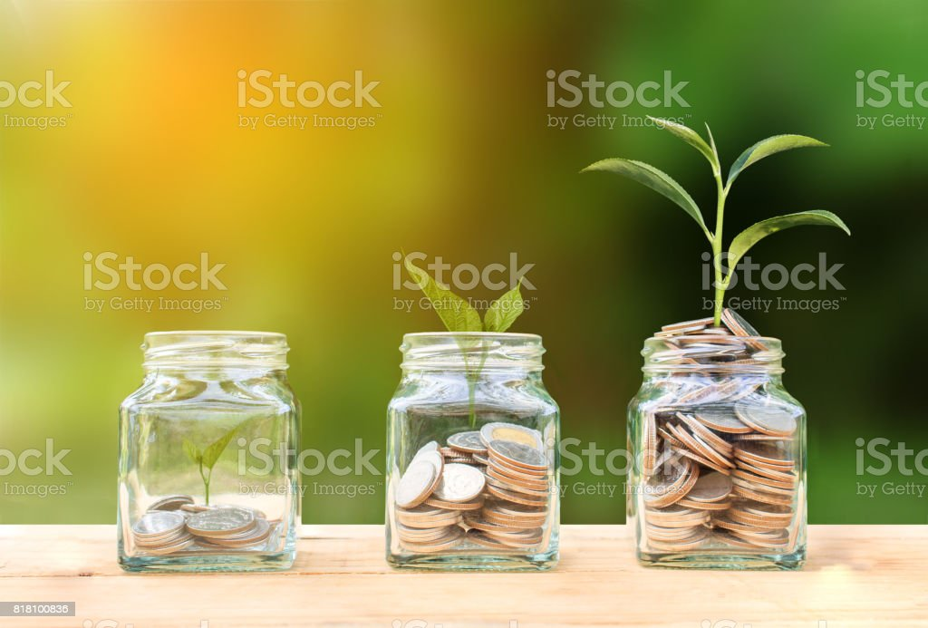 Conceptual coins in glass bottle and growing tree on nature background,Business investment growth concept stock photo