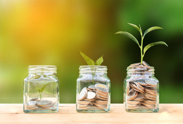 Conceptual coins in glass bottle and growing tree on nature background,Business investment growth concept - foto stock