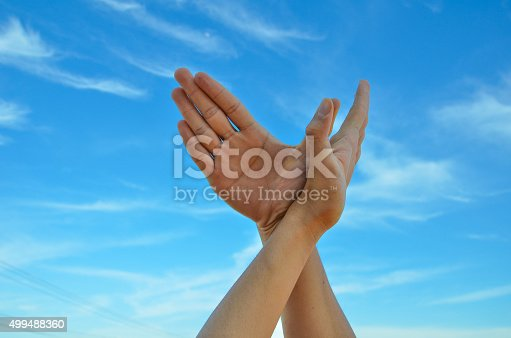 istock Conceptual hand gesture of Dove, world peace concept 499488360