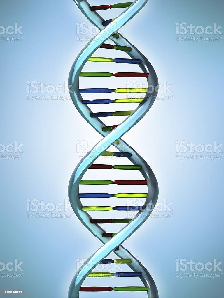 Conceptual Illustration of a DNA molecule royalty-free stock photo