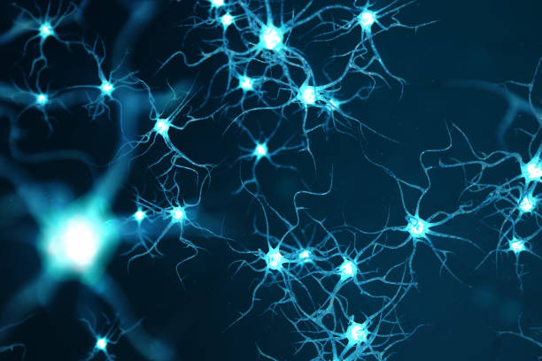 Conceptual illustration of neuron cells with glowing link knots. Neurons in brain on with focus effect. Synapse and Neuron cells sending electrical chemical signals. 3d illustration stock photo