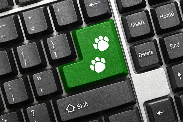 Conceptual keyboard green key with dog footprints symbol picture id520881024?b=1&k=6&m=520881024&s=612x612&w=0&h=5cuxvxu9iotz318ekv3rha8zintem5tqdxub7hpvl6e=