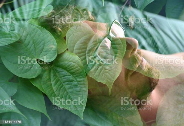 Photo of Conceptual Portrait of Day Dreaming Man Surrounded with Tropical Foliage