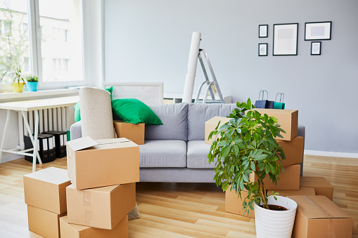 istock Conceptual shot of home interior during move-in with sofa in the middle and boxes lying around 1008375406