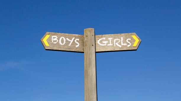 conceptual signpost - boys and girls - gender stereotypes stock pictures, royalty-free photos & images