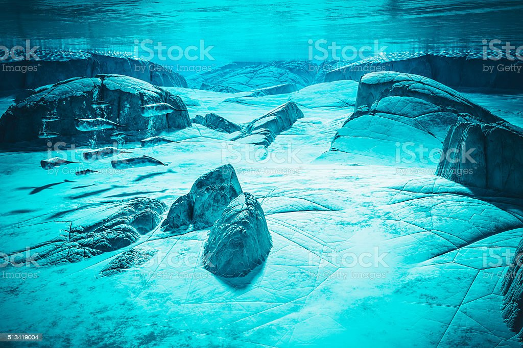 Conceptual unde the water image of a whale pod stock photo