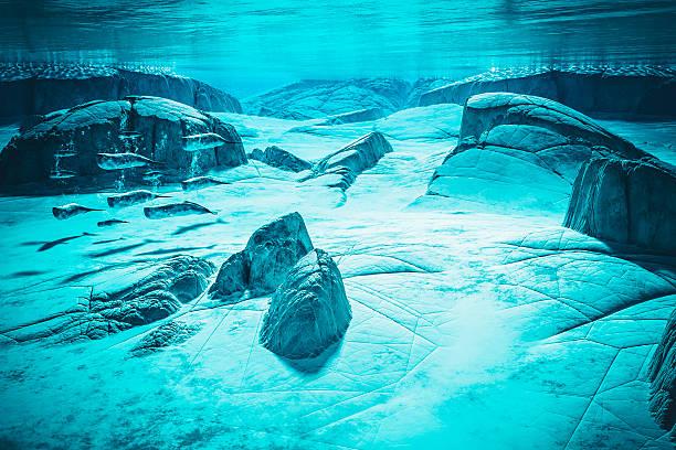 image conceptuelle unde l'eau d'une baleine Pod - Photo