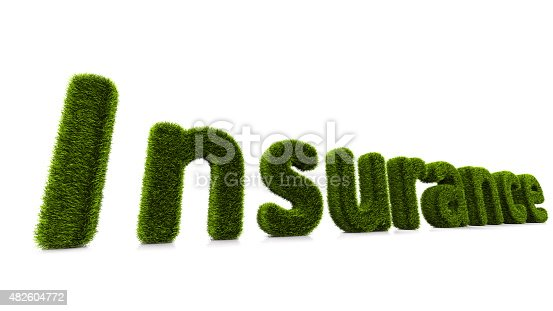 istock conceptual word insurance covered of grass isolated on white background 482604772