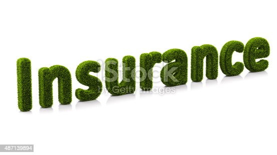 istock conceptual word insurance covered of grass isolated on white background 487139894