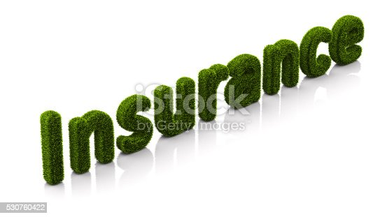 istock conceptual word insurance covered of grass isolated on white background 530760422