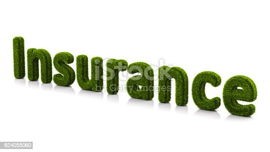 istock conceptual word insurance covered of grass isolated on white background 624055060