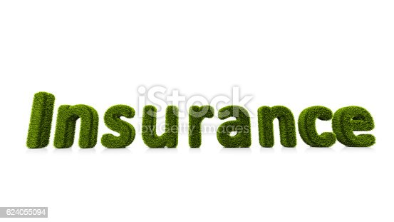 istock conceptual word insurance covered of grass isolated on white background 624055094