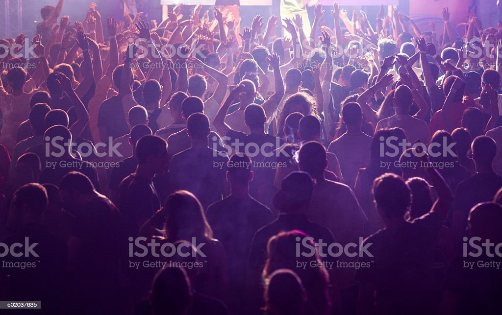 Concert Crowd, hands in the air.