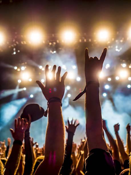 concert crowd - human limb stock photos and pictures