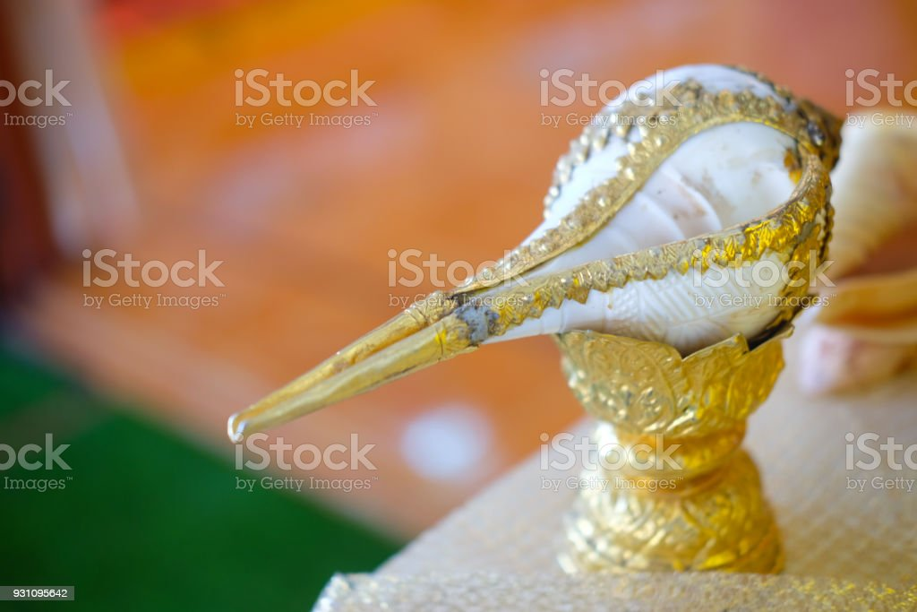 Conch shell for Thai style wedding or water relaunch for the Thai traditional wedding stock photo