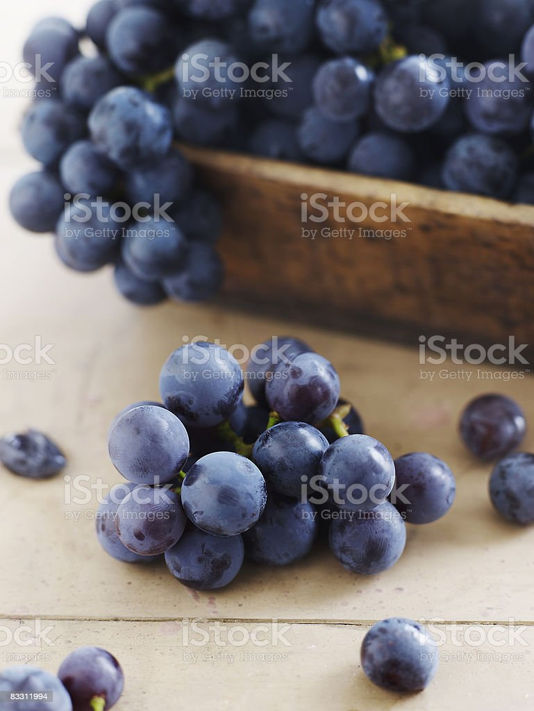 Concord Grapes royalty free stockfoto