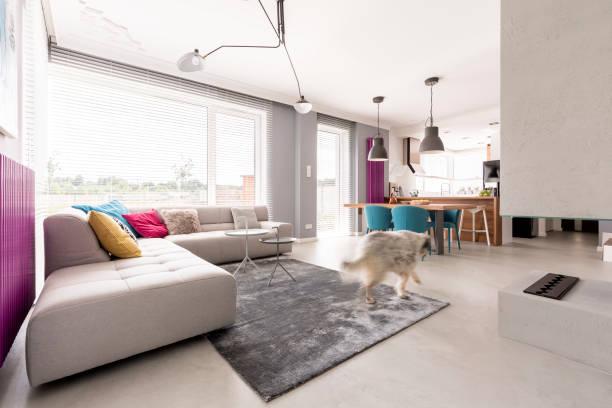 konkrete kamin und großen sofa - küche lila stock-fotos und bilder