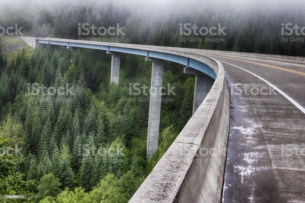 Concrete forest bridge freeway road stock photo