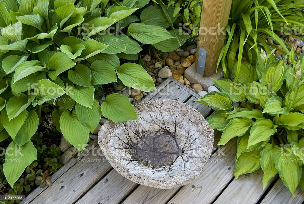 Concrete leaf, some Hostas, pebbles and a patio stock photo