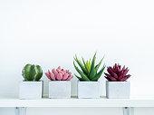 istock Concrete pot cubic shape or geometric cement planter for cactus and succulent plants. 1294365572