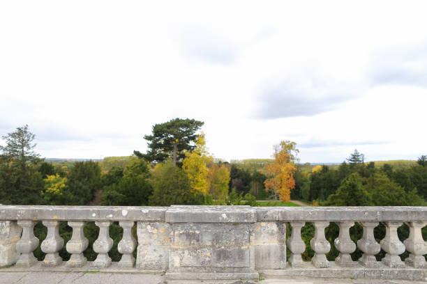 konkrete geländer mit baum-hintergrund - zement terrasse stock-fotos und bilder