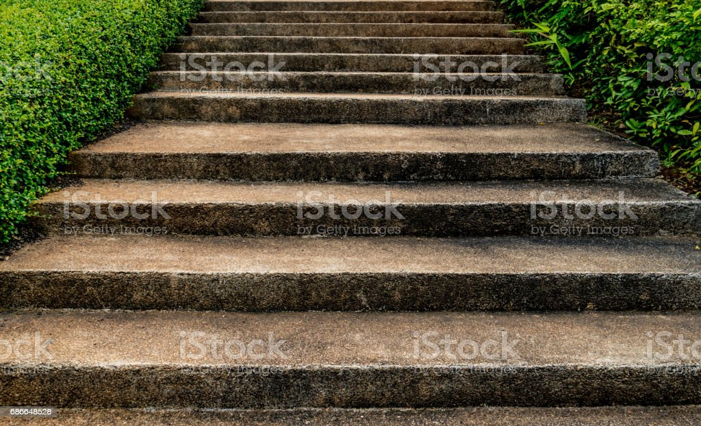 Concrete staircase with green plants royalty-free stock photo