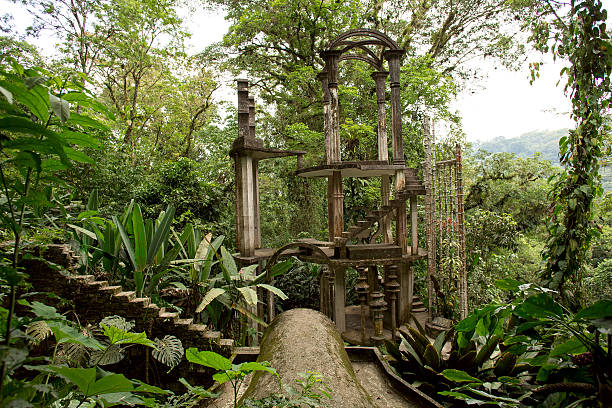 concrete structure with stairs surrounded by jungle stock photo