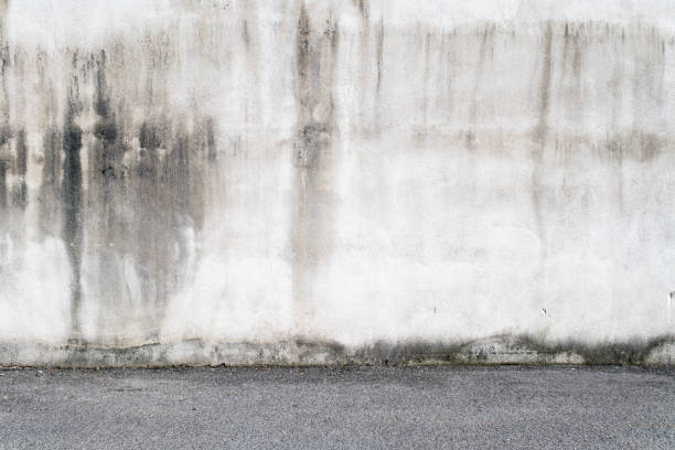 Concrete wall and asphalt stock photo