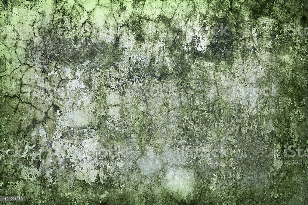 Concrete wall green with time and moisture stock photo