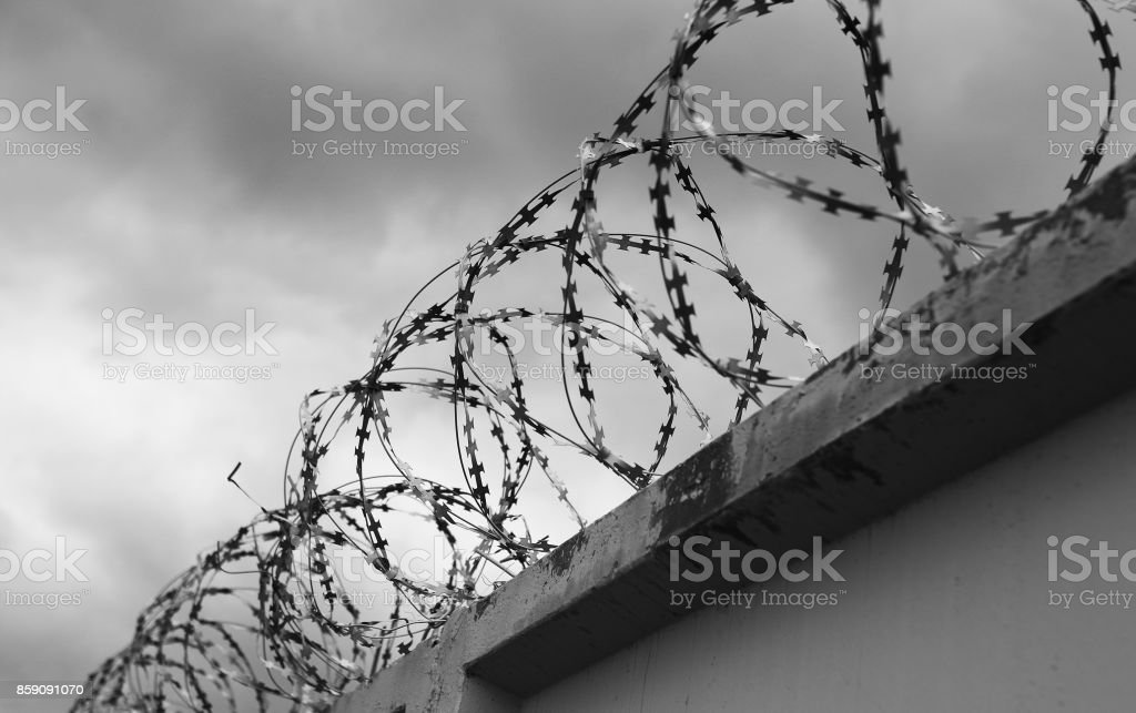 Concrete wall with barbed wire on fence stock photo