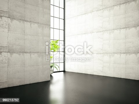 istock Concrete Wall with Window and Plant 990213752