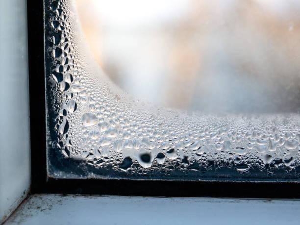 Kondensation am Fenster, Schimmel aus Nass, Energieeffizienzfragen – Foto