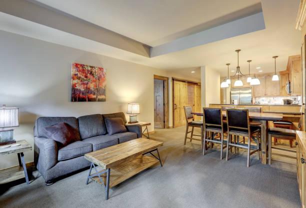 Wohnzimmer im Condo-Stil mit kleinem grauen Sofa und Holzkaffee. – Foto