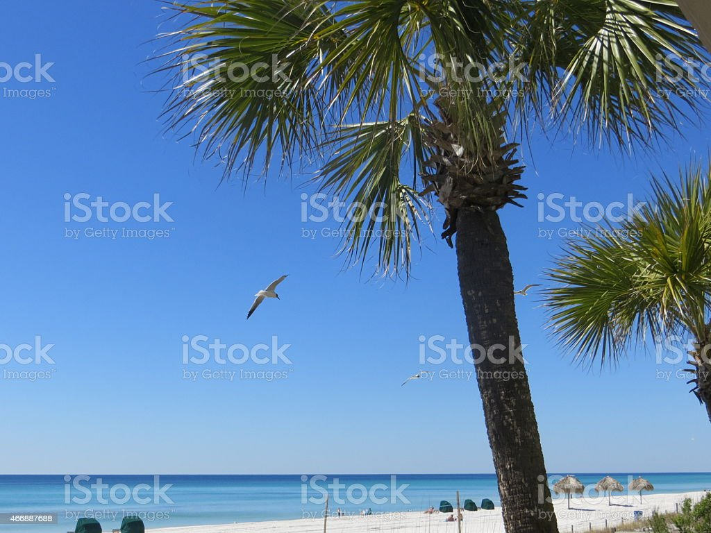 Condo View, Spring Break March 7 2015 stock photo