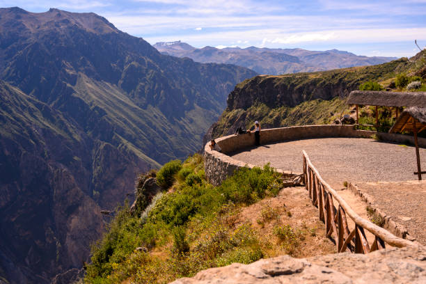 Condor watching at Colca Canyon in Peru stock photo