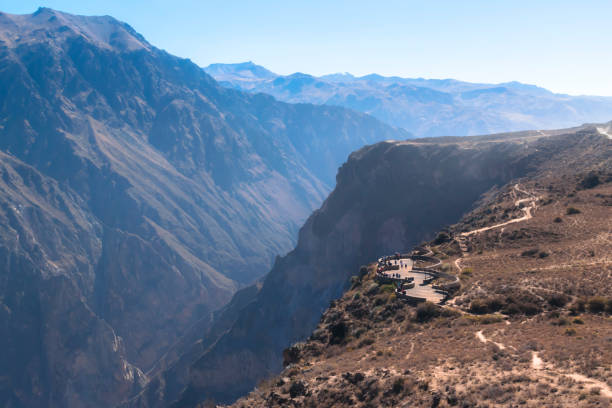 Condor's flight at Colca canyon stock photo