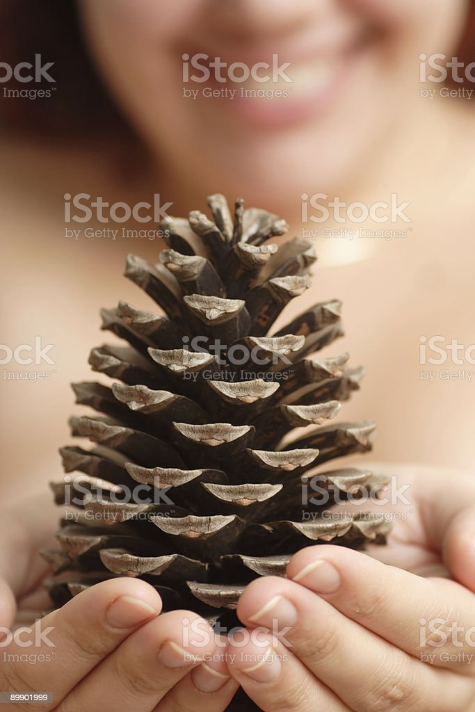 Cone in hands royalty-free stock photo