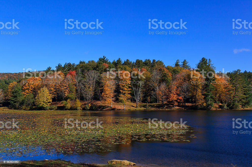 Cone Lake in North Carolina stock photo