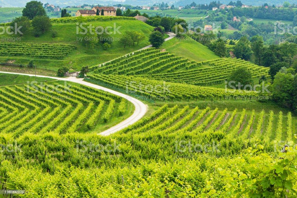 Conegliano Veneto Collabrigo The Prosecco Hills ...