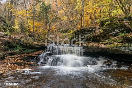 Conestoga Waterfall plunges from the beauty of autumn colors above in Ricketts Glen State Park of Pennsylvania.