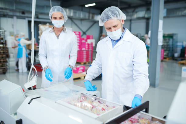 Confectionery factory employees packing boxes into plastic film Confectionery factory workers in white coats using machinery to wrap paper boxes with pastry into packaging film. hair net stock pictures, royalty-free photos & images